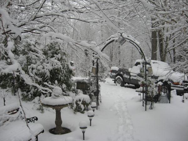 Christmas 2010 006