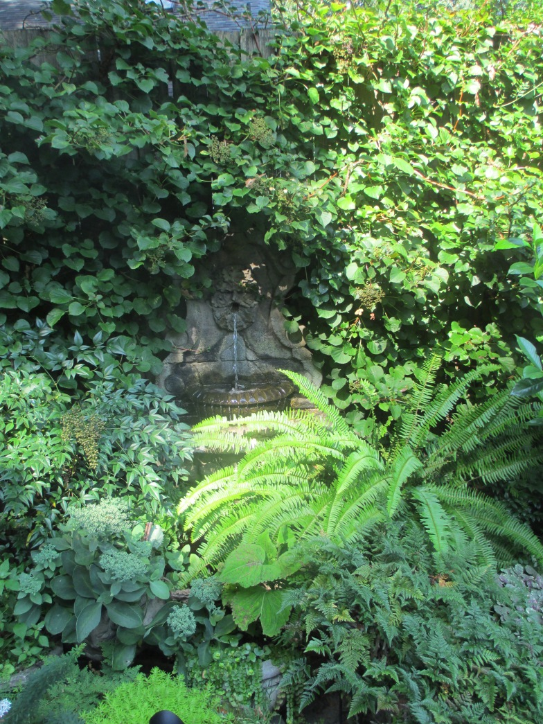 Garden Photos August 2013 005