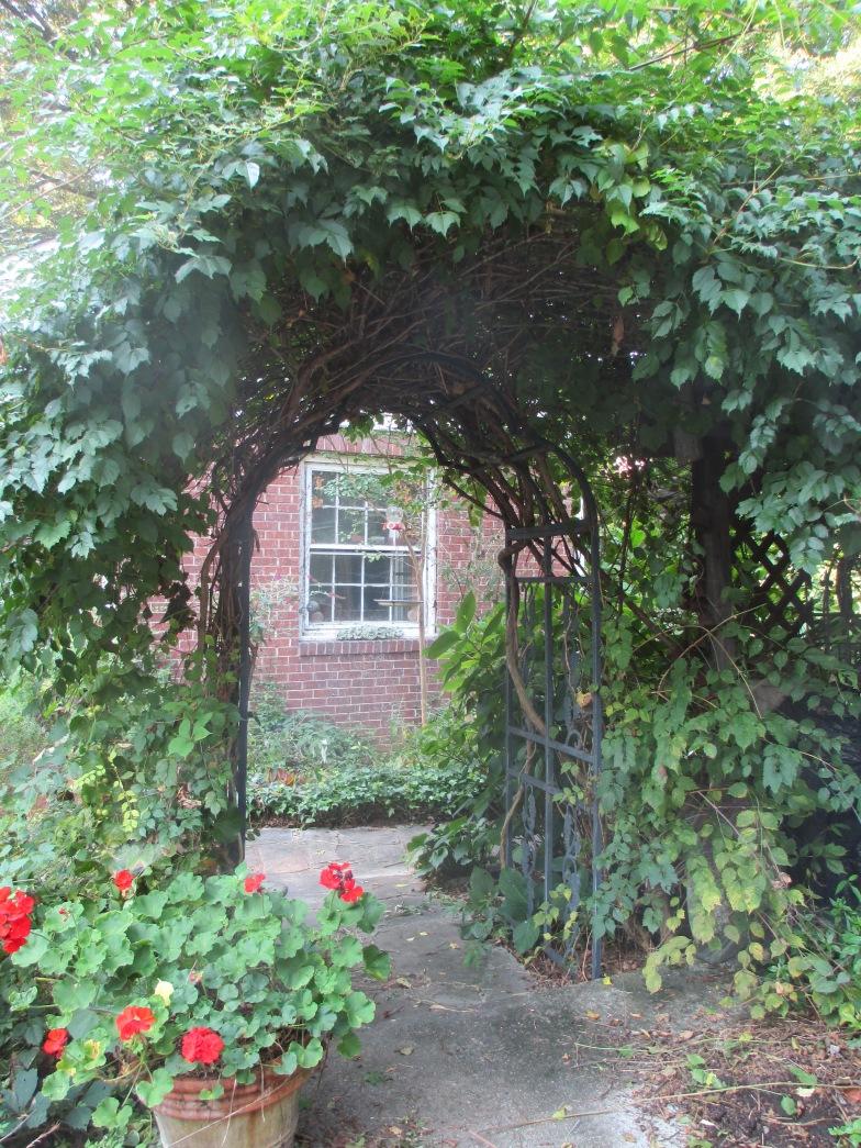 Garden Photos August 2013 010