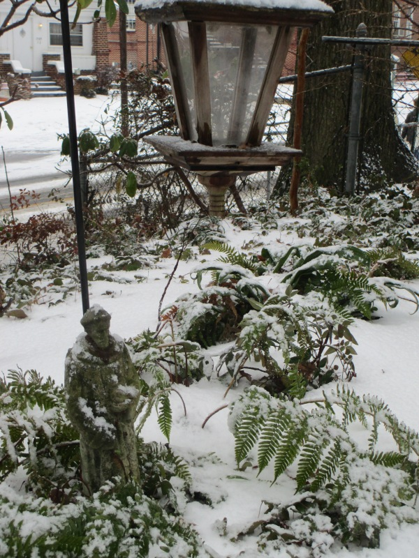 2014 Snowfall #2 008