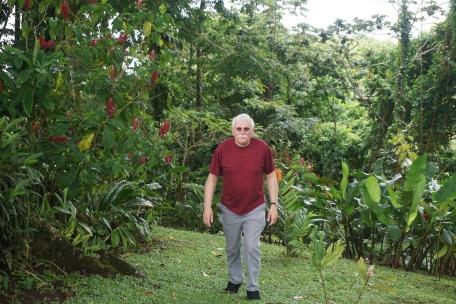 Cal Gough-Ceiba Tree Lodge & Grounds