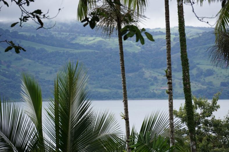 Villa Decary balcony view 2