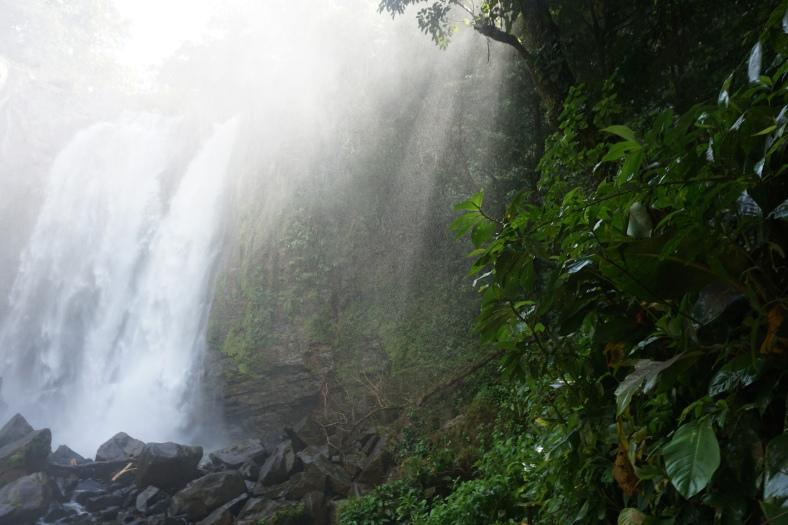 Waterfall Randall and Greg saw 3
