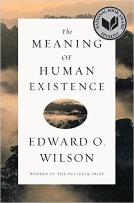 the-meaning-of-human-existence-cover