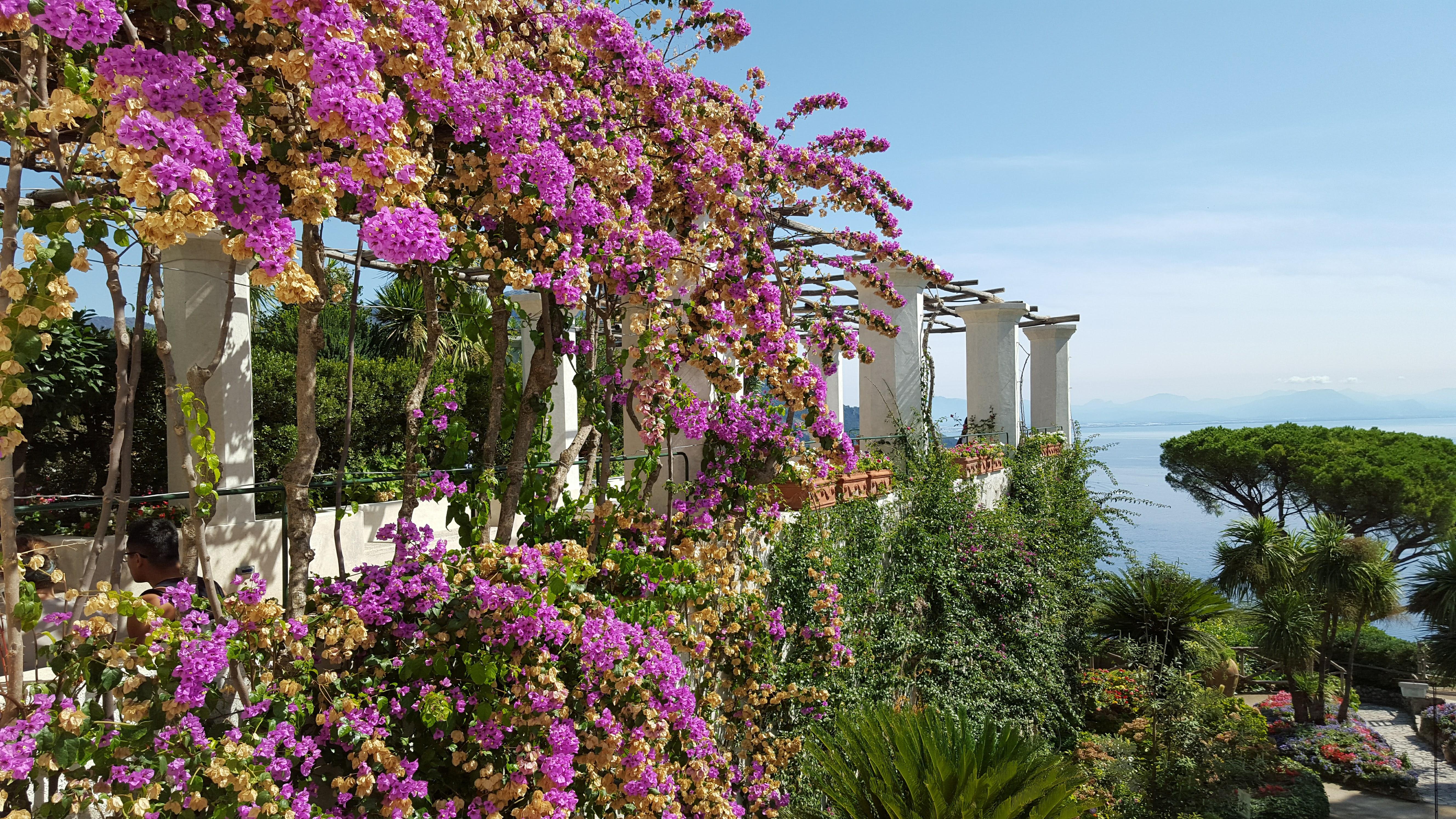 Italy photos by John 405
