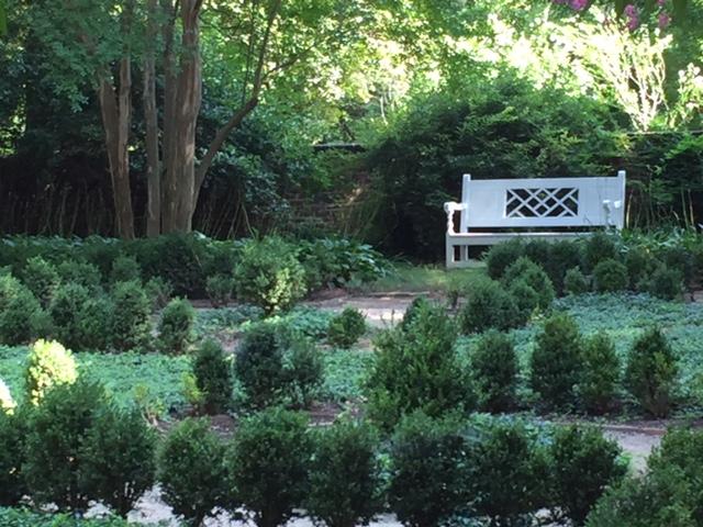 UVA garden shot 1