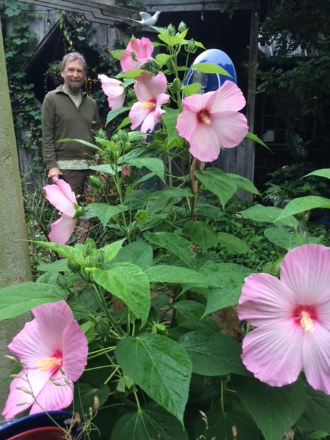 Wytheville Garden Detail 3 with Randy