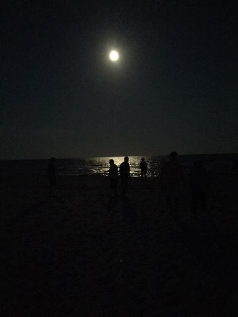 Randy's moonlight ritual