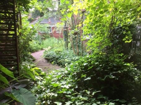 garden bench view