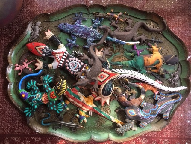 Tray of lizards