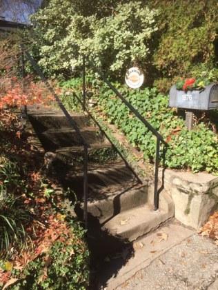 Front steps rails